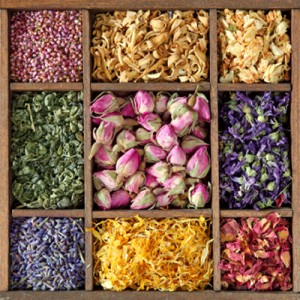 dried-herbs-and-flowers